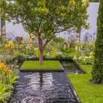 The Amnesty International Magna Carta 800 Garden